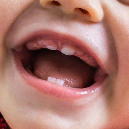 Nascimento dos dentinhos