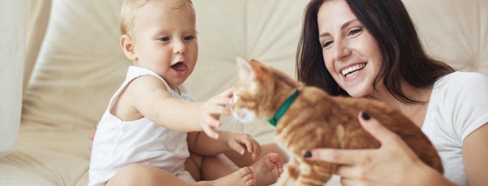 O Papel de animais de estimação no desenvolvimento infantil